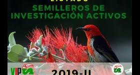 Semilleros de Investigación Activos 2019-II